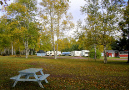 Picnic and tenting area